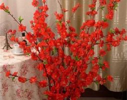 Hoa vải trưng Tết